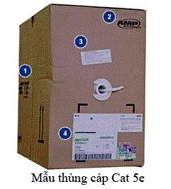 mau-thung-cat-amp-cat-5e